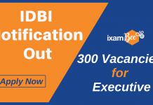 IDBI Executive Notification Details